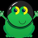 Buzybuy Frogfoot fibre